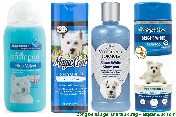 Công bố các sản phẩm chăm sóc sức khỏe dành cho thú cưng tại Hà Nội